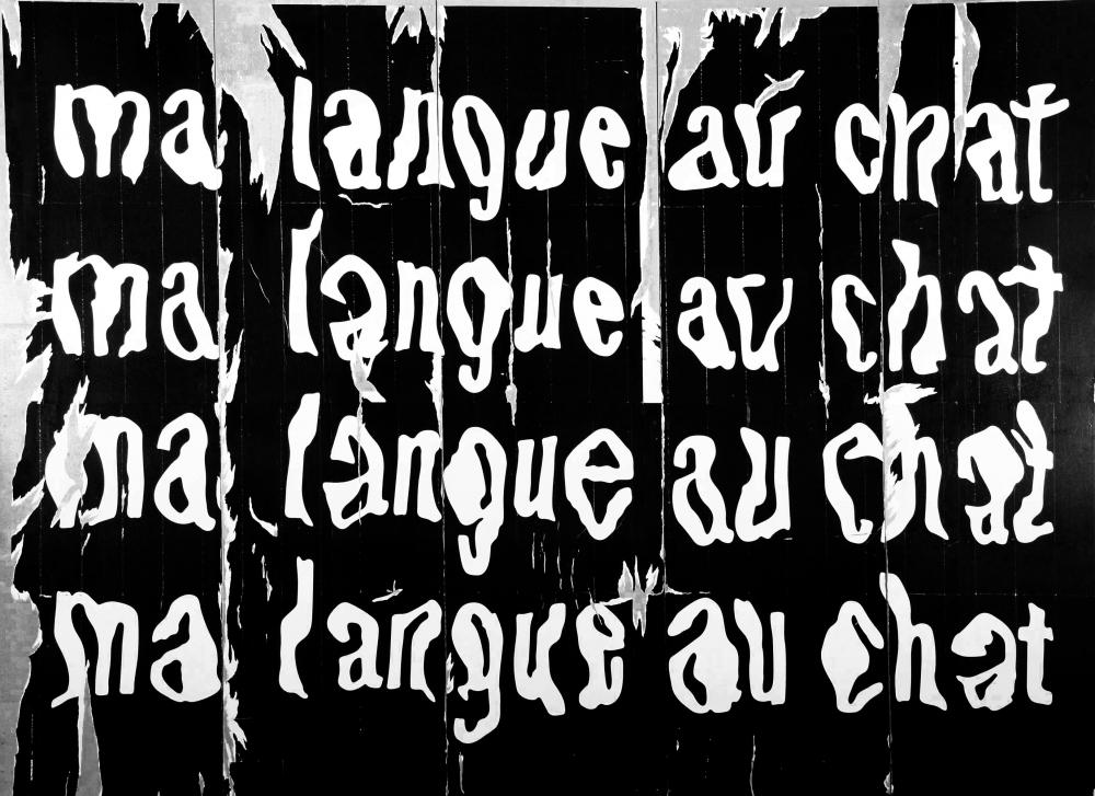 Raymond Hains - Ma Langue Au Chat