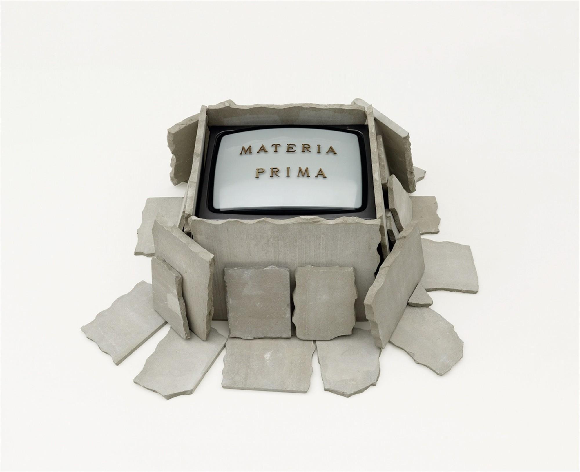 Fabrizio Plessi - Materia Prima